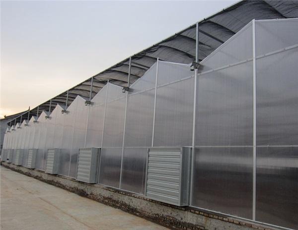 pc阳光板温室厂家