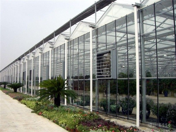 玻璃温室厂家