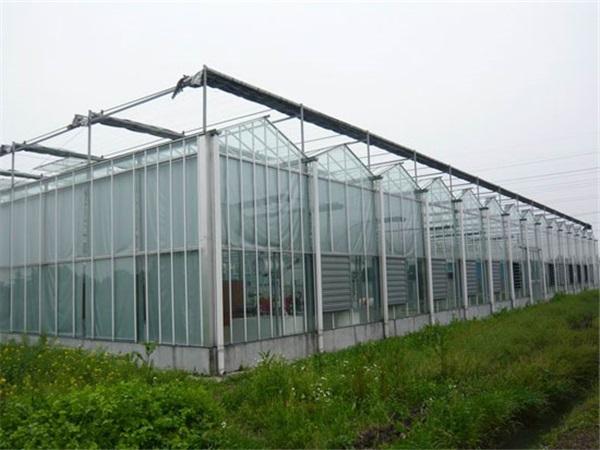 玻璃温室施工
