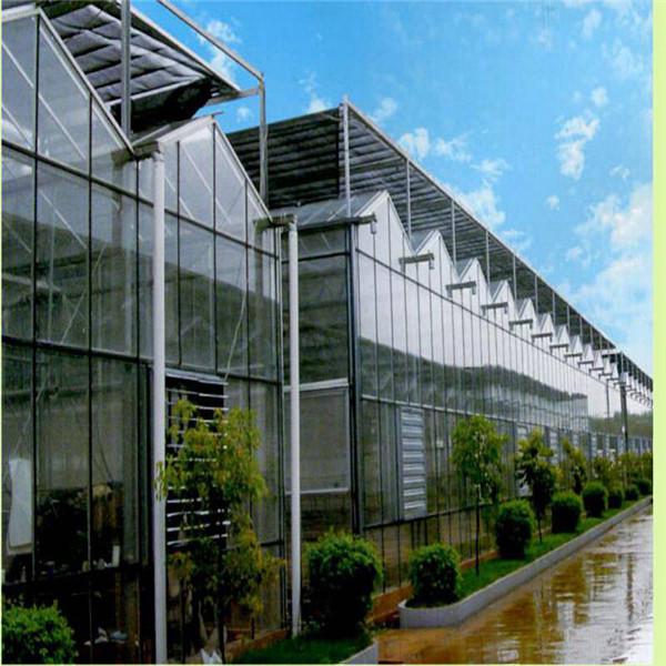 濮阳市连栋玻璃温室增加内遮阳