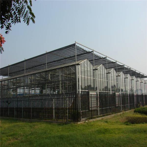 河南玻璃温室施工