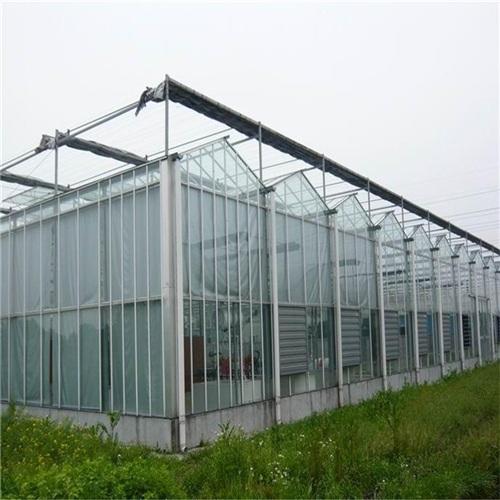 蔬菜薄膜温室建造