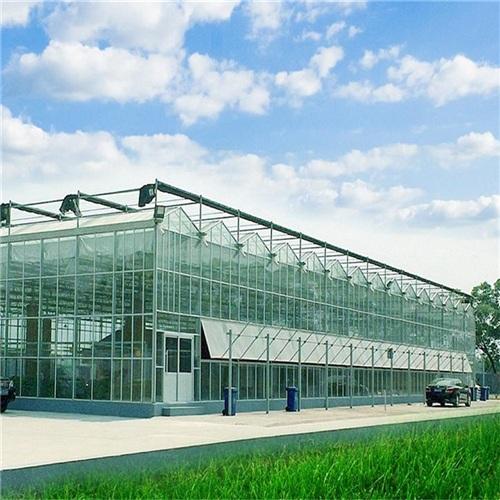日光温室大棚建造