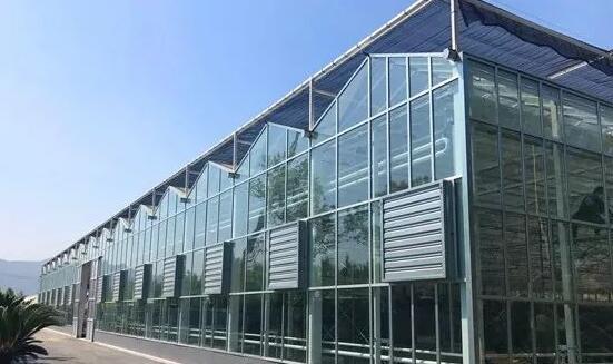 智能温室大棚与传统温室大棚有何区别?