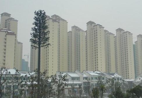 东津新发地