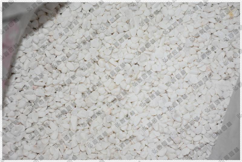 南阳石米供应