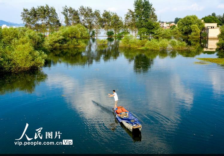 安徽省合肥市庐江县绿树相映成画,美不胜收