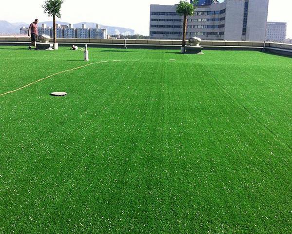 四川人造草坪在日常有哪些注意事项?