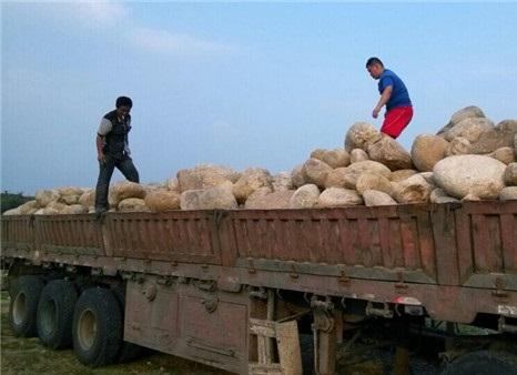 鹅卵石运输现场