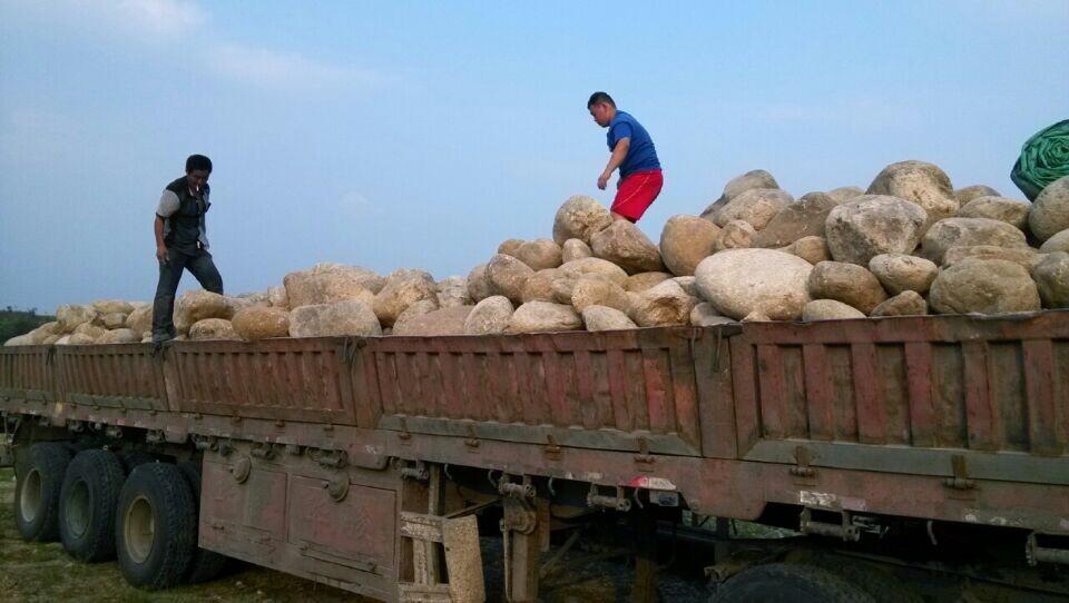 河南鹅卵石是这样被装上车的