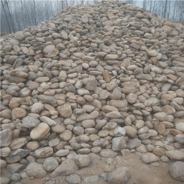 南阳自然黄色石子供应 园林置石散而不乱散得有章法