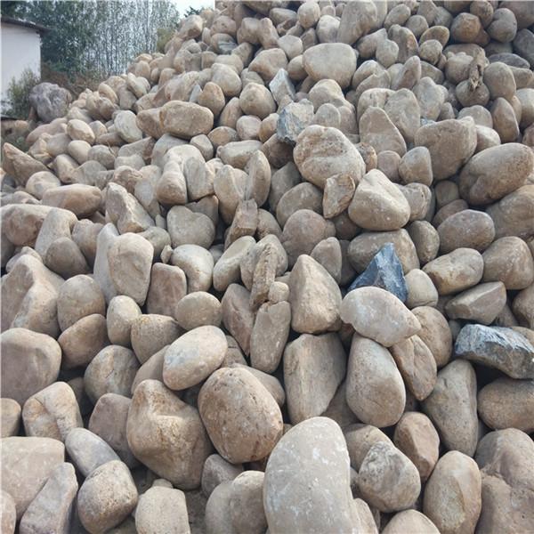 南召沙子石子批发 与不同的植物搭配能展示不同的景观