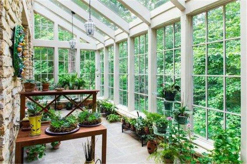 河南龙华门窗告诉你阳光房适合种植摆放什么植物?