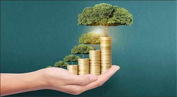 你知道环保管家的提出吗?服务内容是什么?