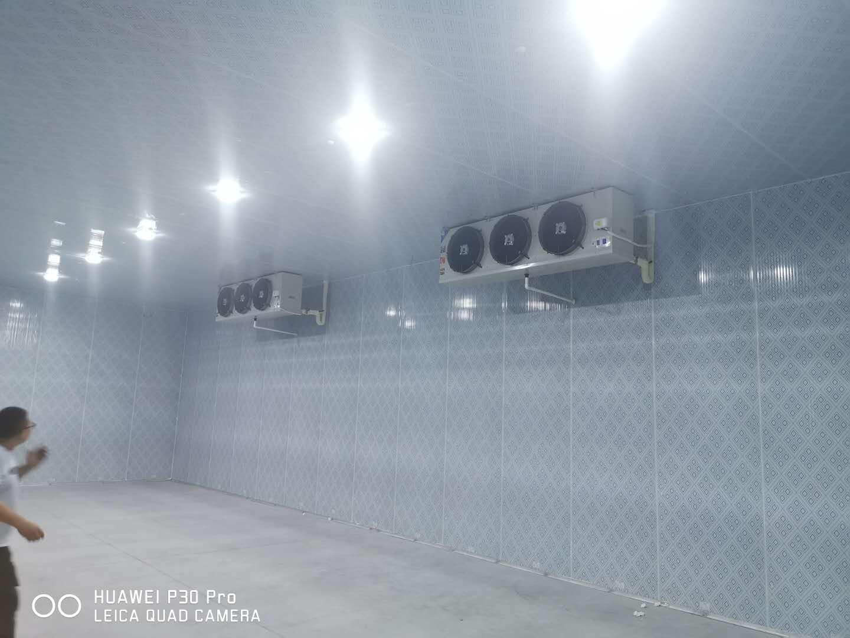 冷库建设安装厂家