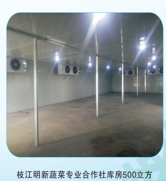 枝江蔬菜专业合作社冷库建设