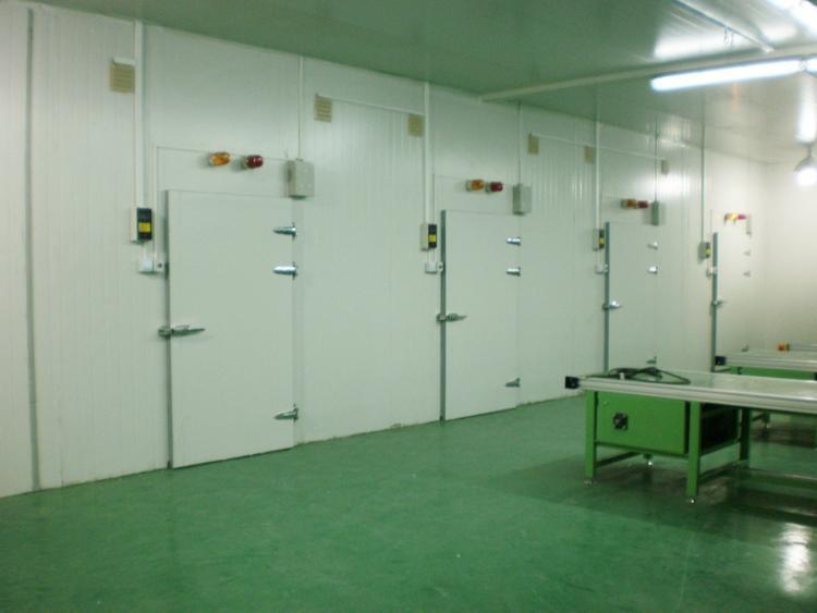 冷庫設備不僅局限于內陸使用,在諸多沿海城市也少不了它們的身影