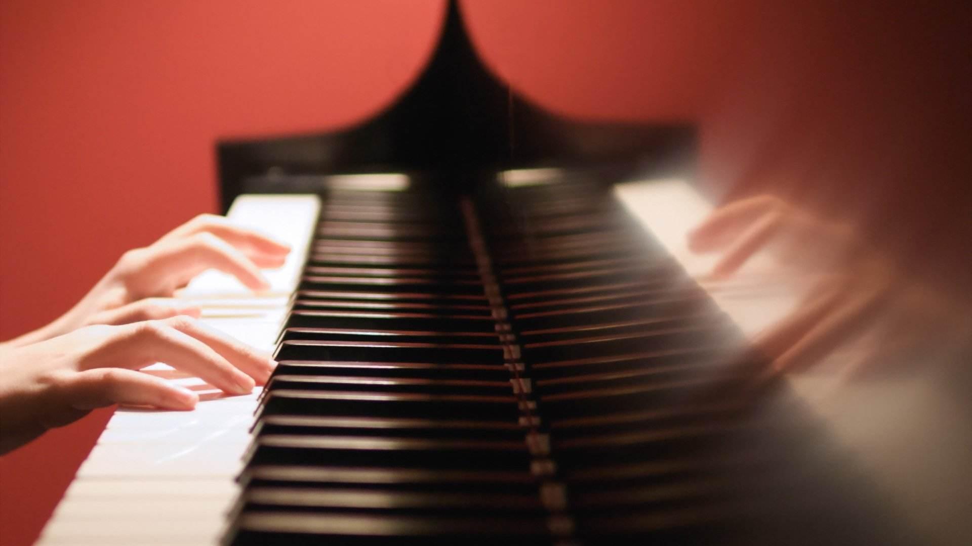 南阳钢琴学校
