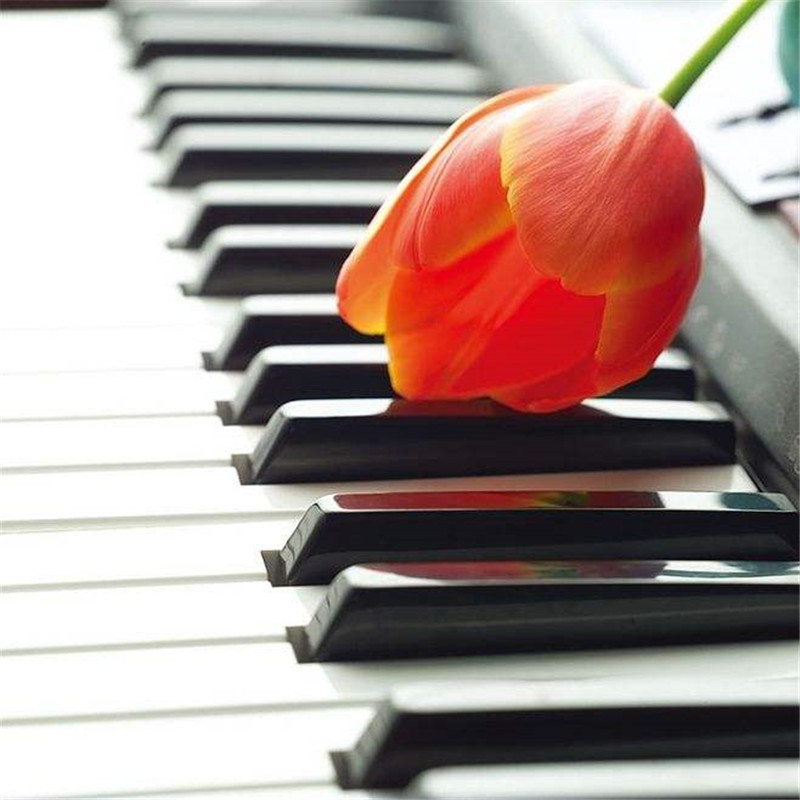 南阳钢琴考级培训---钢琴练习曲怎么练?