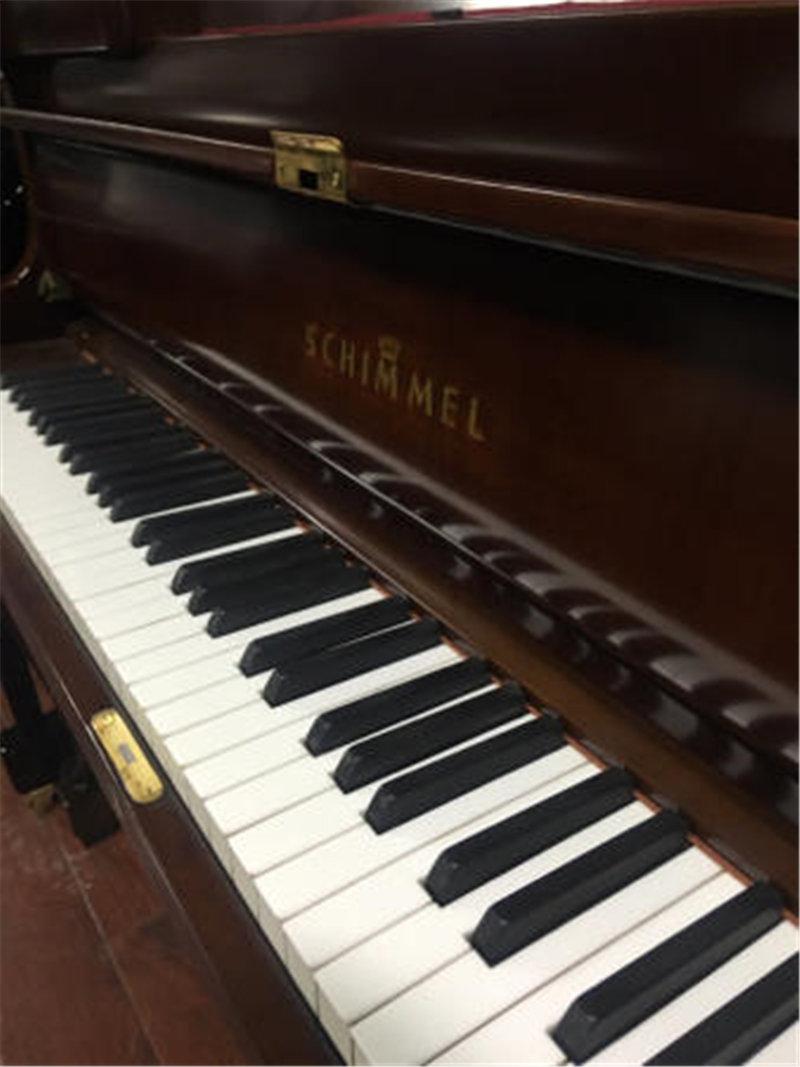 南阳钢琴考级---钢琴的优势在哪里?孩子能学钢琴吗?