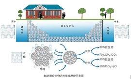 污水生物处理