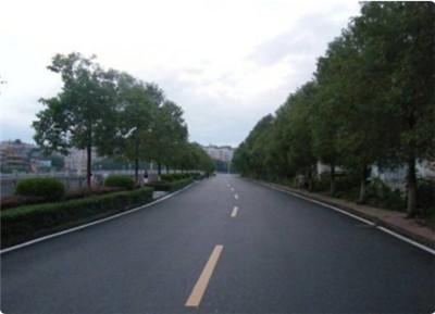 沥青路面的养护需要注意什么?