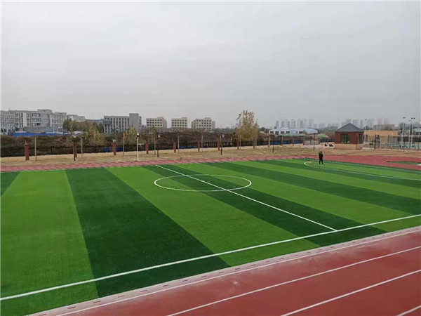 塑胶跑道和人造草坪