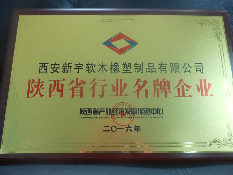 陕西省行业名 牌企业