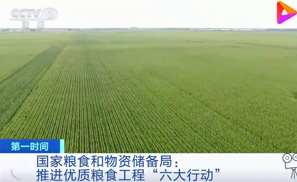 2021.5.11国家粮食和物资储备局:小麦保供稳市的物质基础坚实