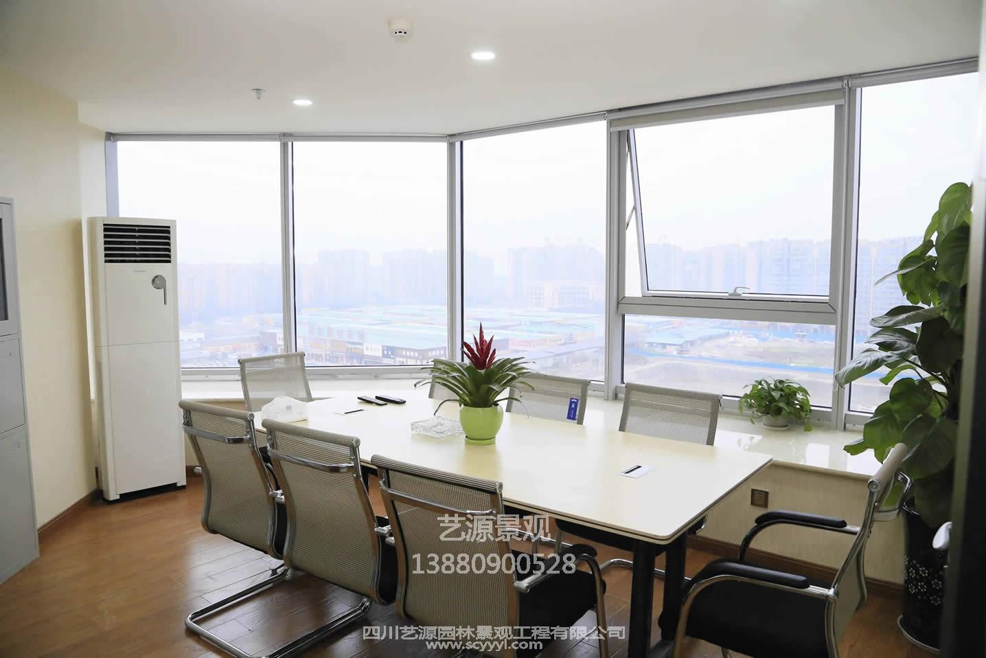 四川塑石假山企业风采展示