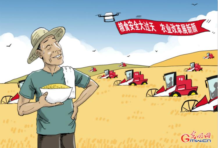 【实践新论】构建新时期粮食安全战略政策体系