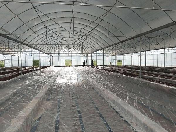 成都温室大棚新工程案例