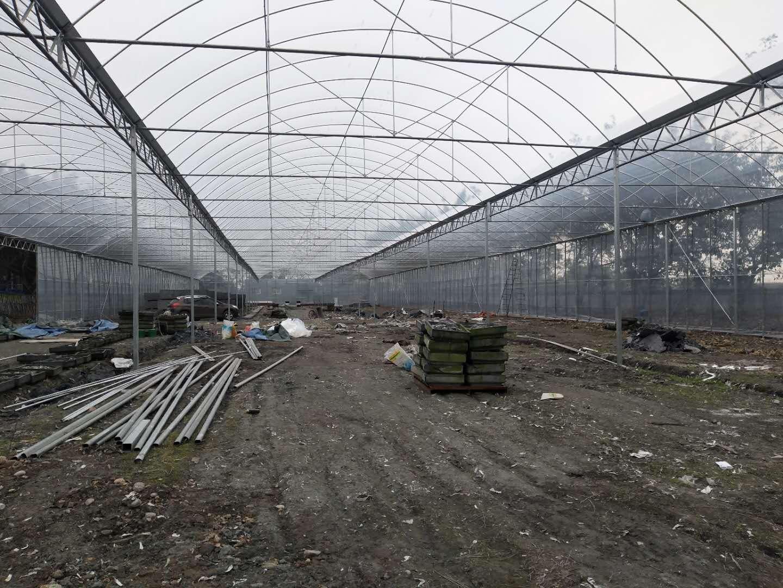 成都温室大棚搭建