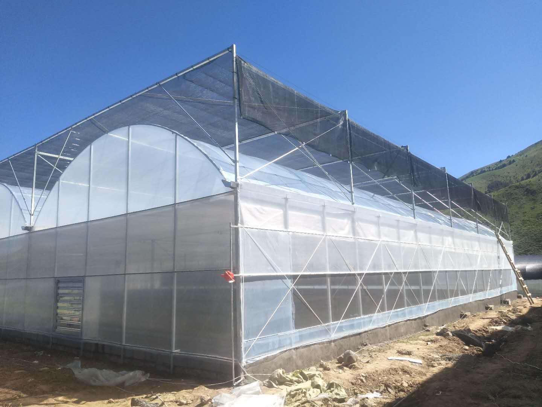 南充成都温室大棚建设