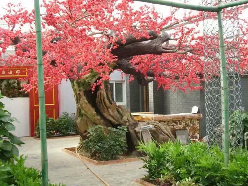 汉中假树制作