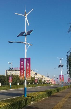 风光互补太阳能道路灯