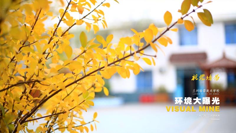 兰州培蕾美术学校环境大曝光之秋韵