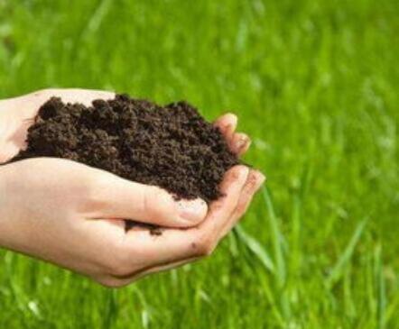 土壤检测的必备操作流程指南,土壤检测的重要价值