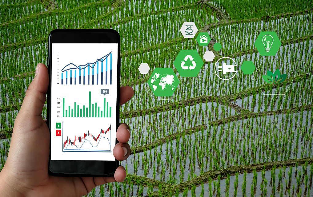系统十:农业四情监测系统