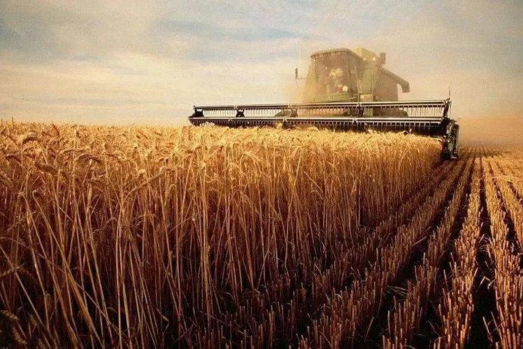 十四五期间肥料行业四大热点方向