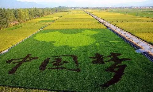 田园综合体丨休闲农业策划的基本思路
