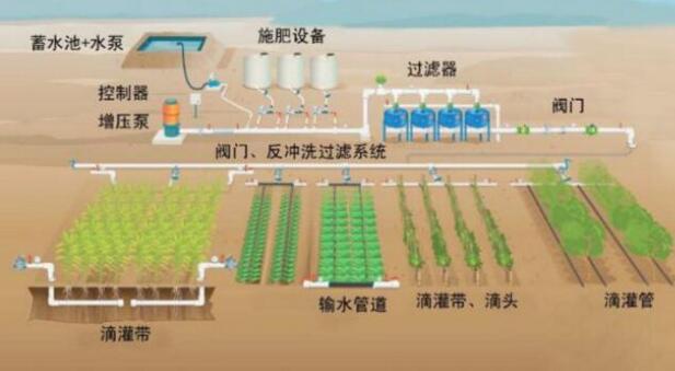 节水灌溉施工