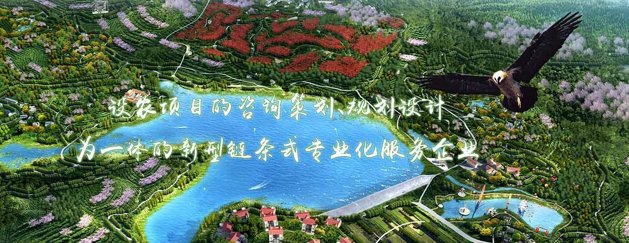 四川农业咨询策划