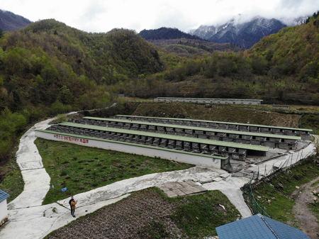 农业生产托管运营