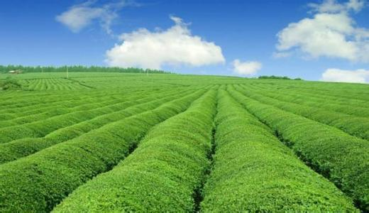 四川农业规划
