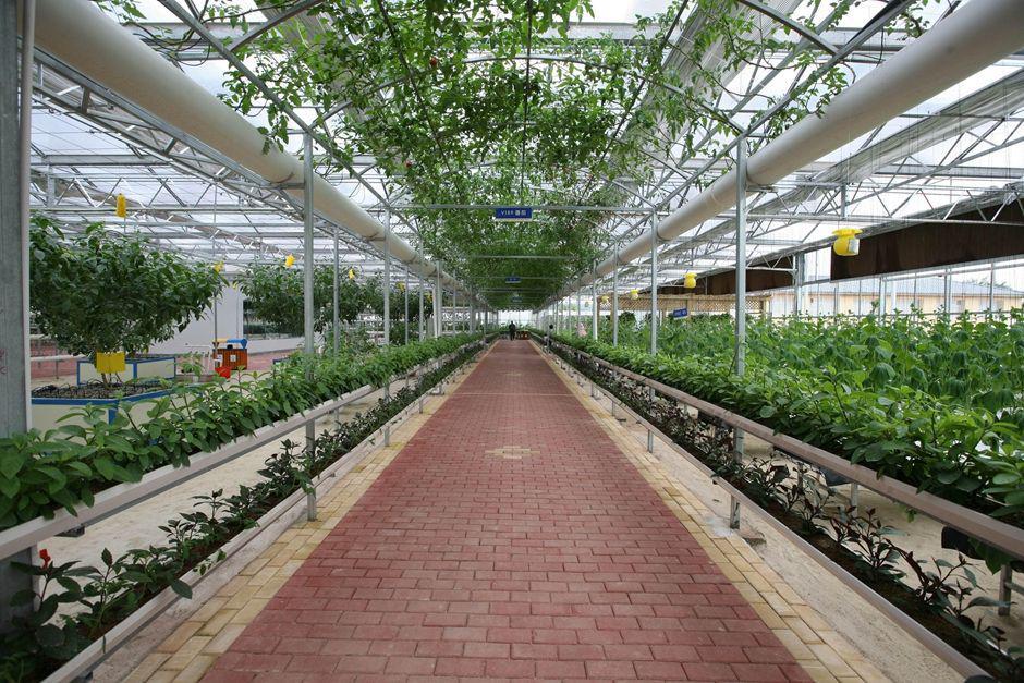 重庆农业工程施工
