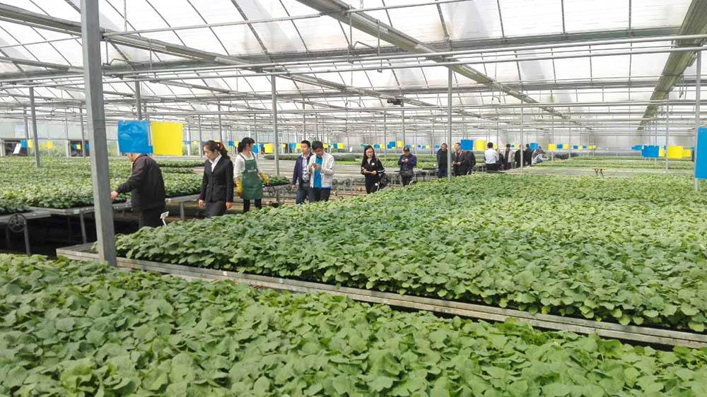 农业科技园