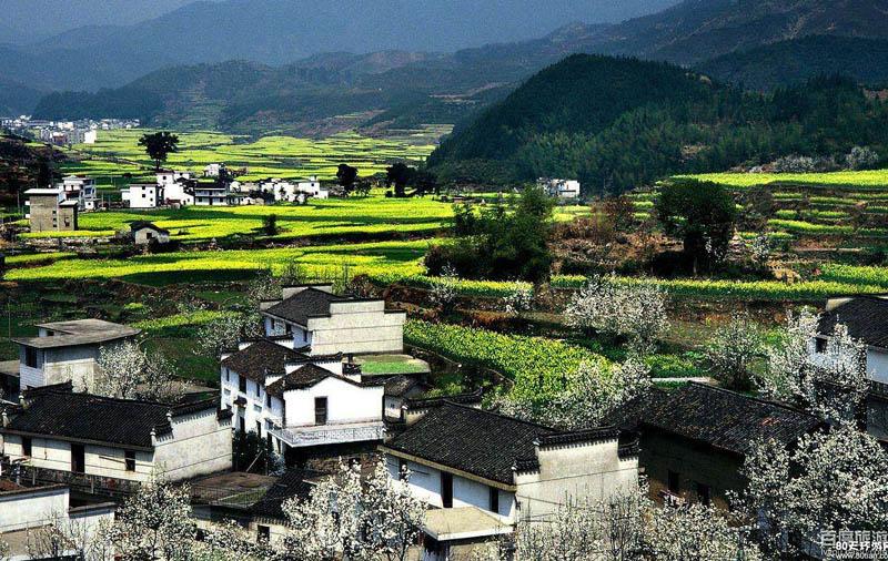 乡村规划中景观元素浅析