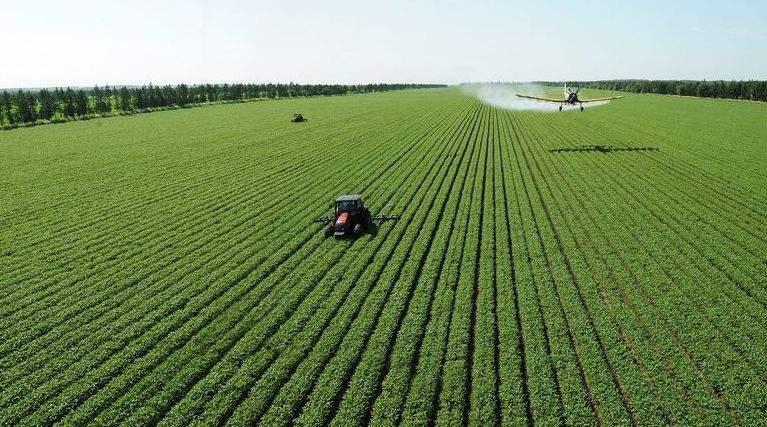 智然元素农业规划时评——质量兴农开启农业强国时代