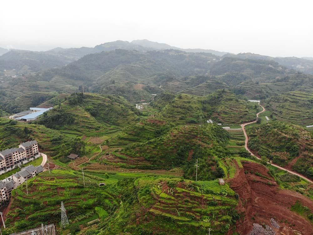 农用地转用基本流程是怎么操作的?